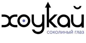 «Хоукай» выстрелит в Россию